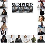 Afrosvensk i det nya Sverige
